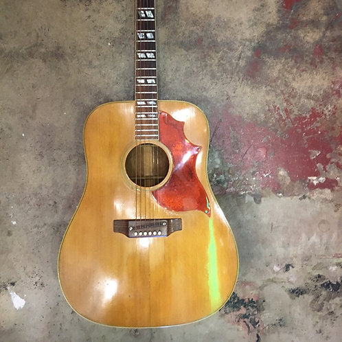 Gibson Country Western 1969