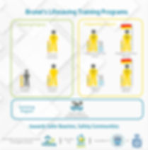 Brunei Lifesaving Training Program Struc