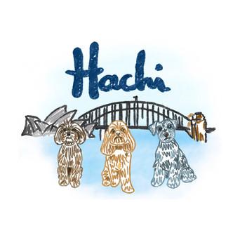 Hachi takes Sydney!