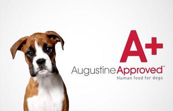 Augustine Approved Workshop