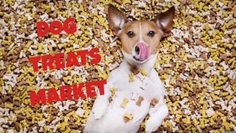 Dog Treats Market 15th & 16th July