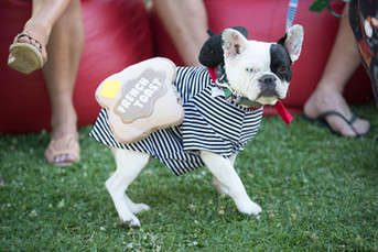 Doggy France'y Dress Party at Paris to Provence Festival