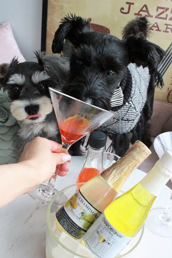 Hachi's Wine Pawty 23 & 24 June 2018