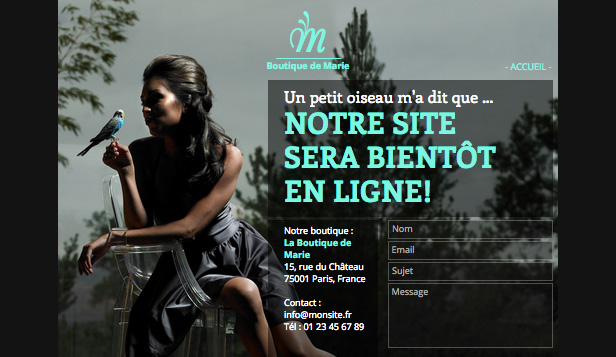 Mode et Beauté website templates – Boutique en Construction