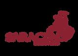 Saracen-logo- No Background Colour.png