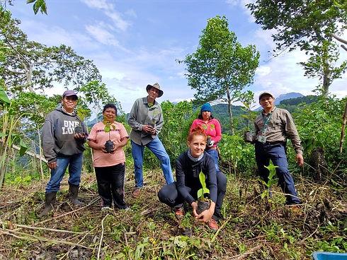 team planting trees_edited.jpg