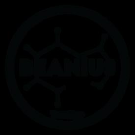 Beanius Box Logo.png
