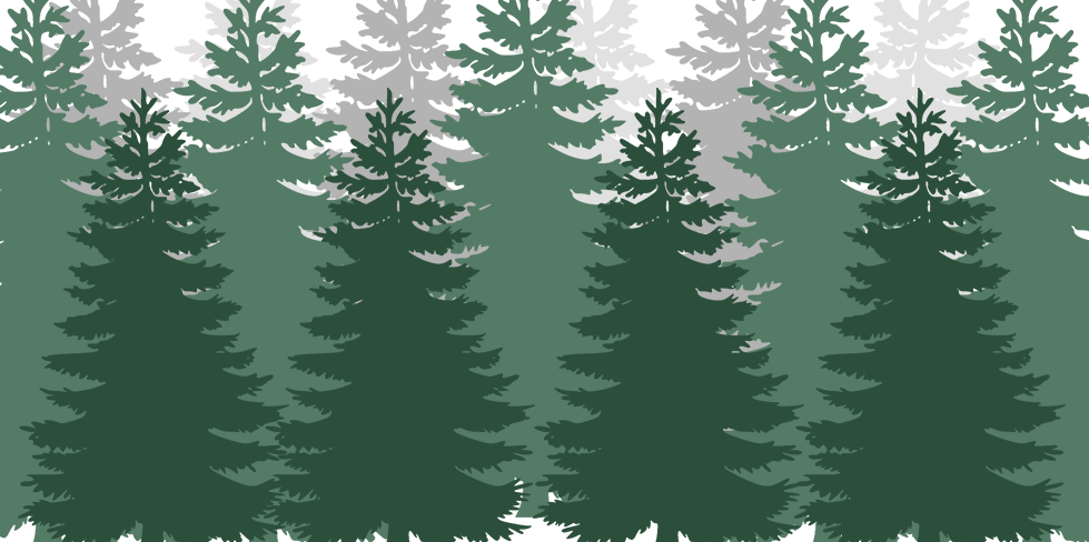 Long row of trees.png