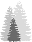 Trees 3.png