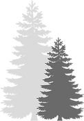 Trees 2.png