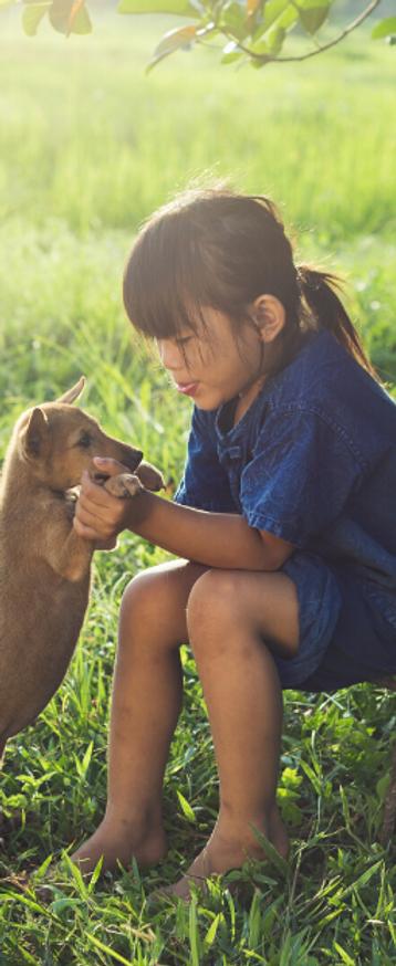 Dog friendly children (1).png