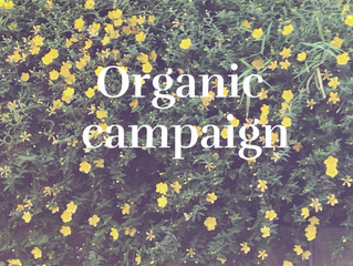 Organic campaign!!オーガニックキャンペーン!!