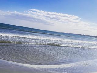 tavii、家族でビーチクリーンをしてきました