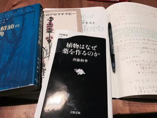 35歳、人生で今が一番勉強してます。