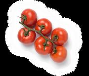 155-tomaquet-branca-extra.png