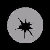 guidestar-01.png