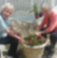 Haven Planting 052018-crop.jpg
