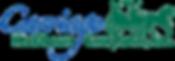 CHC logo_Blue & Green.png