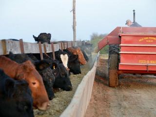 Tiskilwa Historical Society to Sponsor Farm Tour on Sunday, October 8