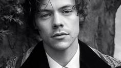 Harry Styles, un Artista que Promete un Futuro Brillante.