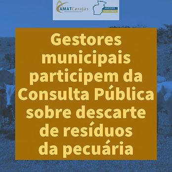 Consulta_Pública.jpeg