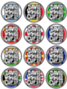 DWC Countries Collage smaller.jpg