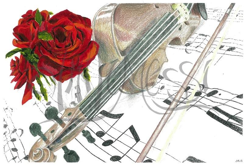 violin rose-25