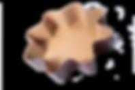 forme cottura stella.png