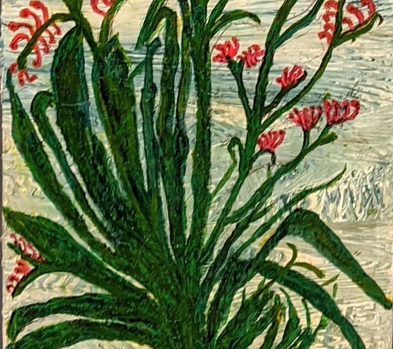 Tami Esancy_Haemodoraceae.jpg