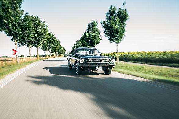 Ford Mustang 1.jpg