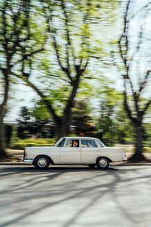 Mercedes 220 3.jpg