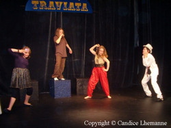 traviata4_20090122_2057950031