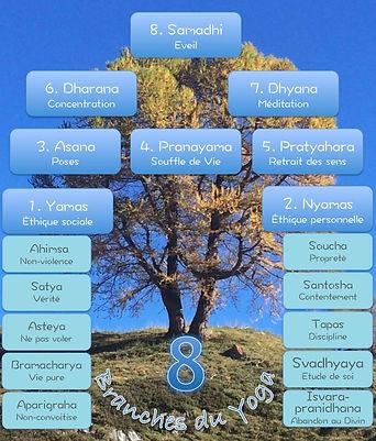 les 8 pilies du yoga de Suzanne Gergely pour ses ateliers de yoga à Yverdon