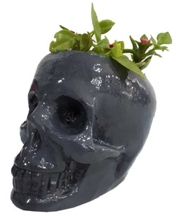 plantpot1