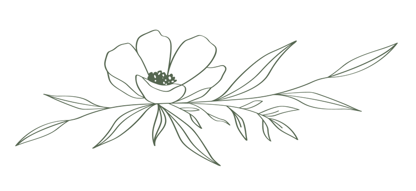 anemone flower 2.png