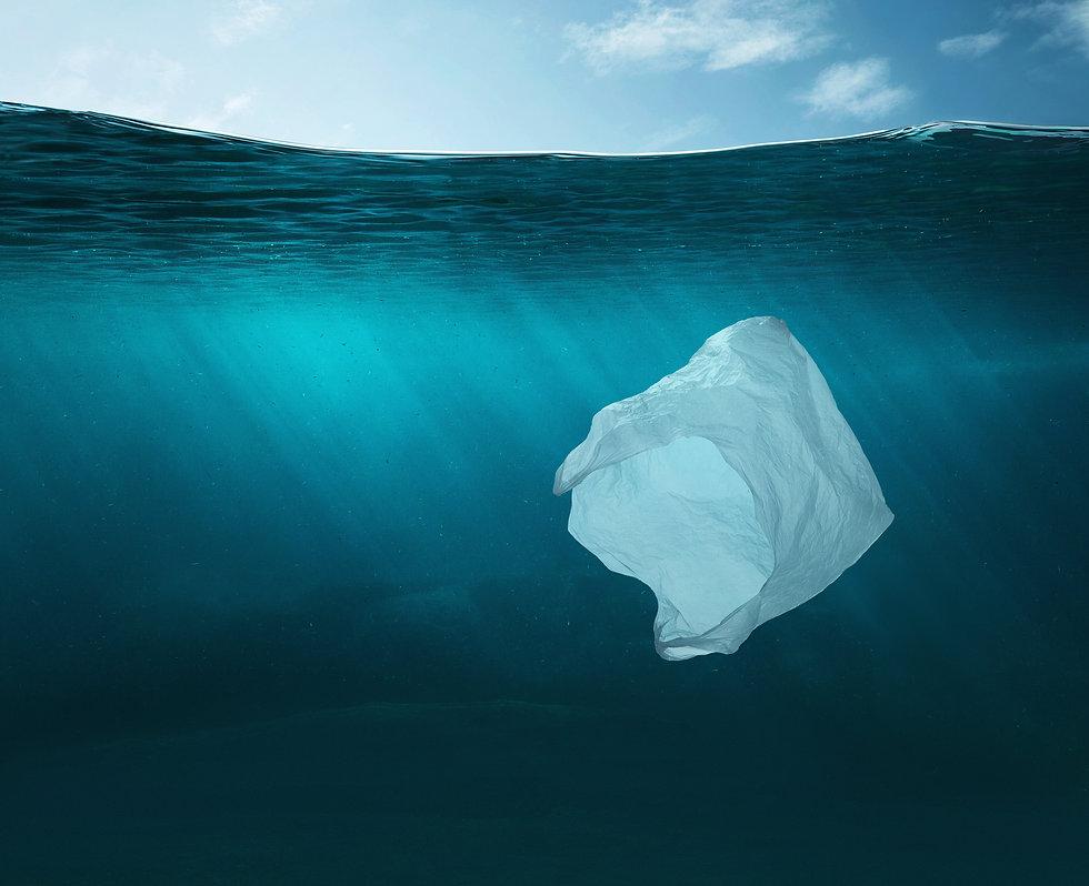 Plasticbag ocean.JPG