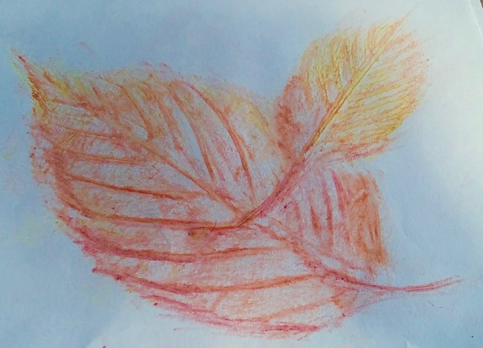 Leaf Rubbing, Oil Pastels