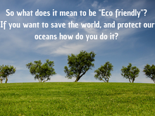 How to be Eco Friendly