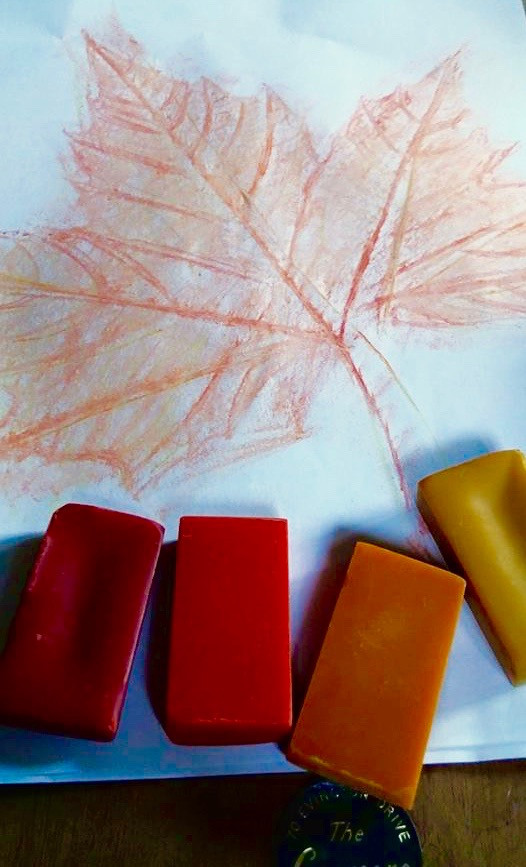 Leaf Rubbings, Soft Crayons, Artist Grade Crayons, Blendable Crayons