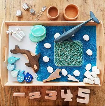 Montessori vs Waldorf Early Years Education