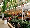 Playa del Carmen Shopping.jpg