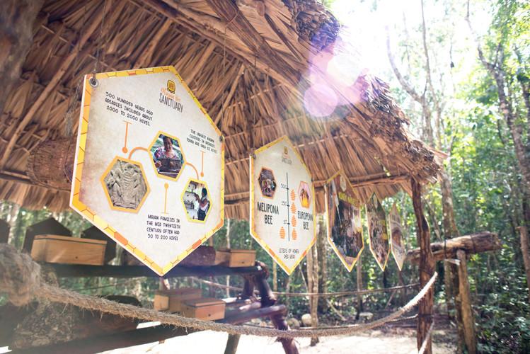 Mayan Bee Sanctuary