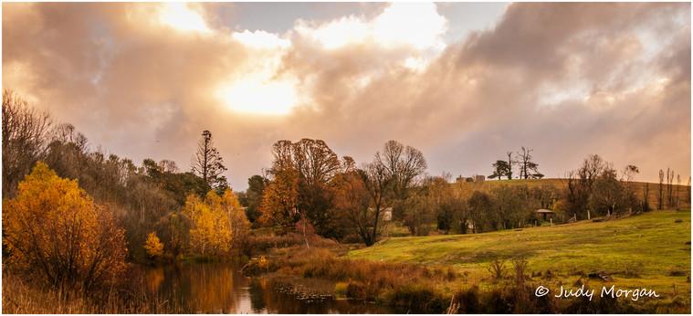 autumn colours delegate.jpg