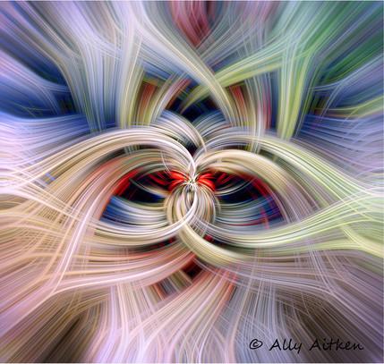 Frangipani twirling.jpg
