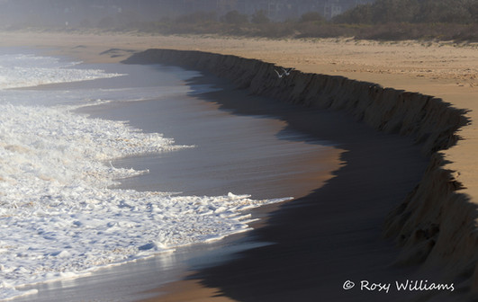 Surf & Shadow.jpg