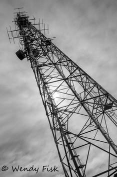 The Tower - Buckeridge Lookout.jpg