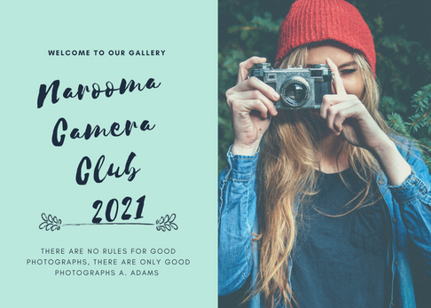 Narooma Camera Club 2021.png