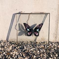 Glasrahmen Schmetterling XL pomba.ch