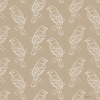 BIRDS LINEART