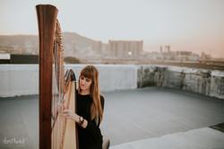 harpnoted